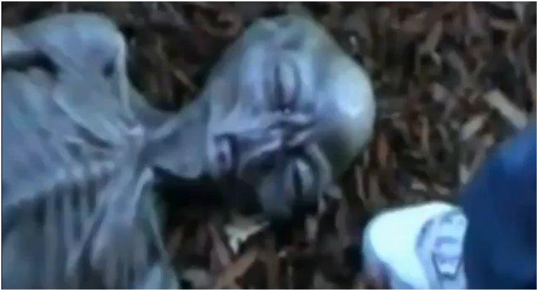 Un cadavre d'extraterrestre en Italie