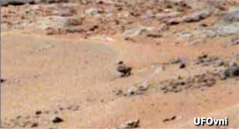 la grenouille, le canard et le lézard sur Mars Curiosity_05.08.13_canard_mars