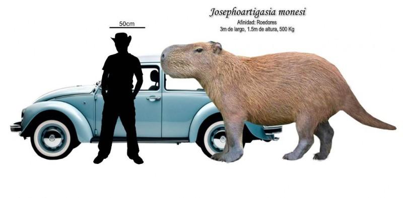 J-monesi