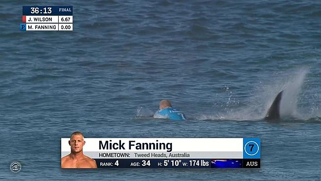 Mick Fanning requin