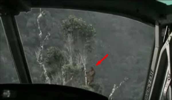 Un pilote d'hélicoptère au Vietnam a vu un Bigfoot