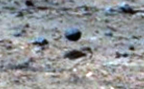 Une sphère en lévitation photographiée sur Mars par le Rover de la NASA
