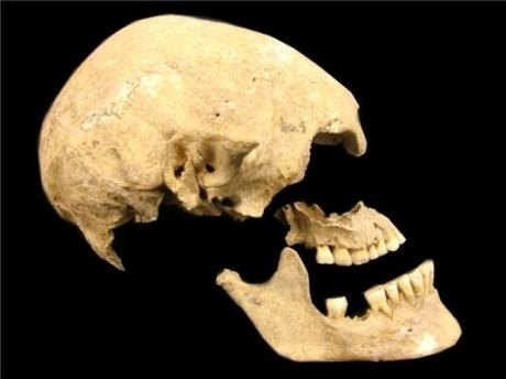 Un troisième ancêtre, inconnu jusqu'ici, dans l'arbre généalogique des européens modernes
