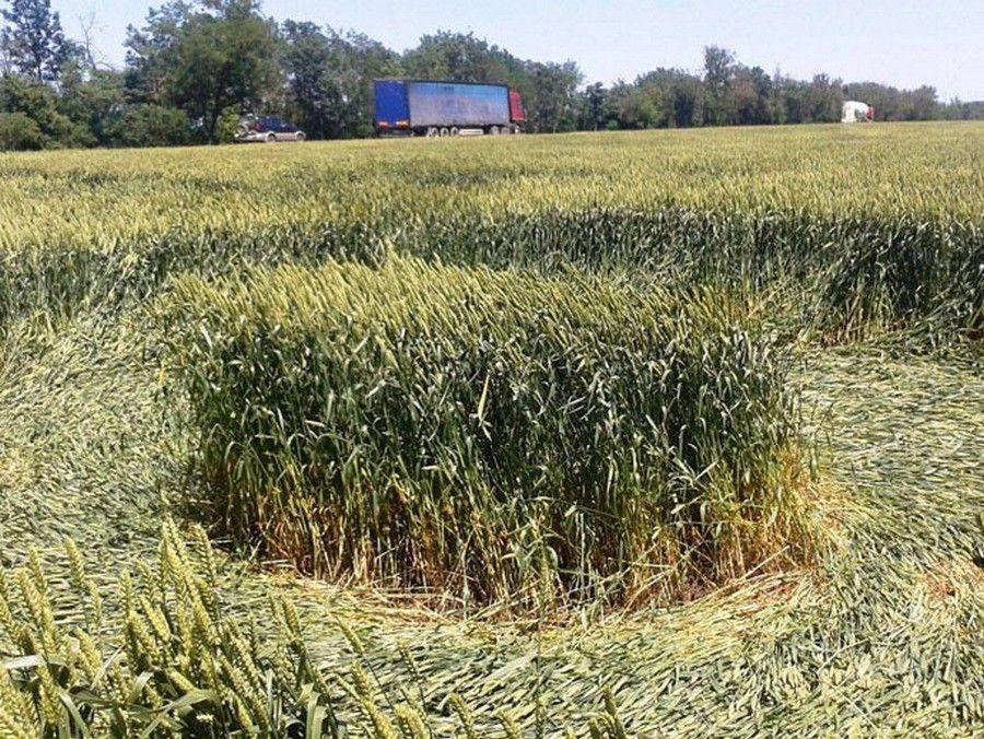 Des crop circles sont apparus dans un champ russe