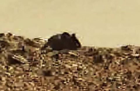 souris-mars-1