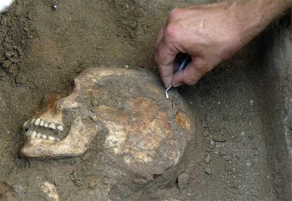 L'ADN révèle un chapitre inconnu de l'histoire de l'Homme