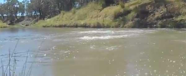 Australie : Les bouillonnements de la rivière Condamine s'intensifient