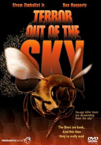 Terror-oot-Sky-78-dvd-front