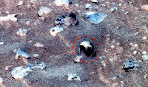 shell, sea, Faces, anomoly, anomolies, Mars, Rover, Spirit, photo, alien, aliens, base, building, structure, UFO, UFOs, sighting, sightings, news, May, 2016, paranormal, Bigelow, Aerospace,1