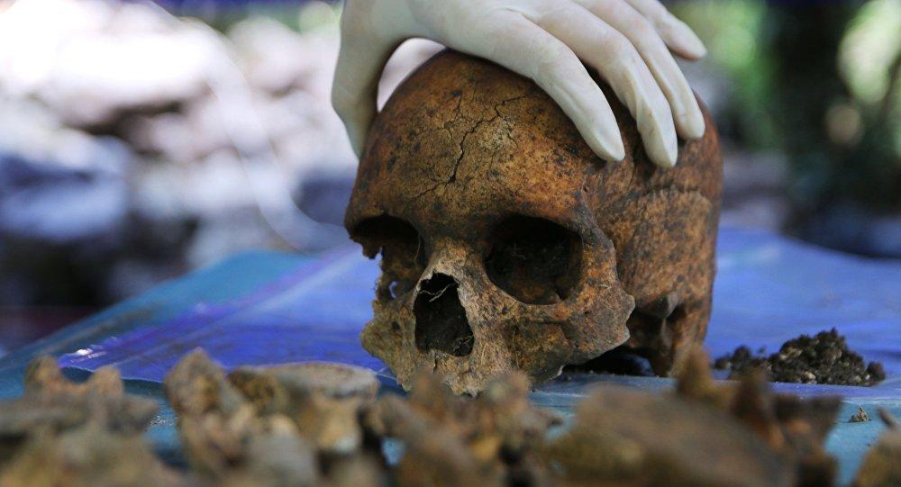 Un crâne réécrit l'histoire de l'humanité