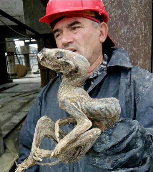 Le cadavre momifié d'une étrange créature aurait été retrouvé en Russie
