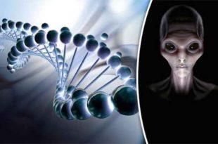 L'ADN humain a été conçu par des extraterrestres