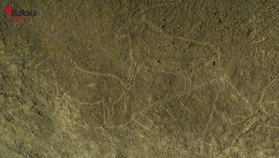 De somptueuses gravures rupestres découvertes en Espagne