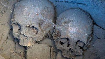 La recherche montre que les êtres humains anciens ont eu des rapports sexuels avec des êtres non humains