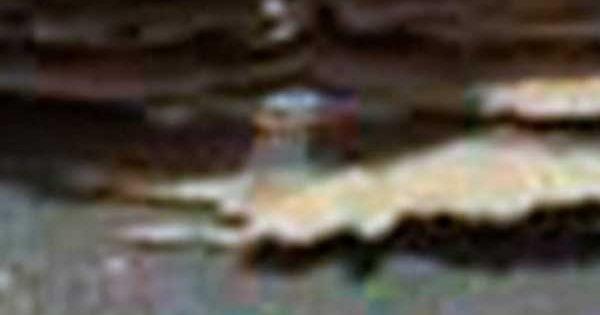 Une méduse sur Mars dans des Photos de la NASA