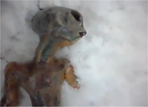 Un cadavre d'Alien découvert en Sibérie