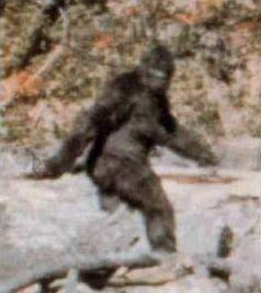 Le Bigfoot filmé dans le Saskatchewan, au Canada