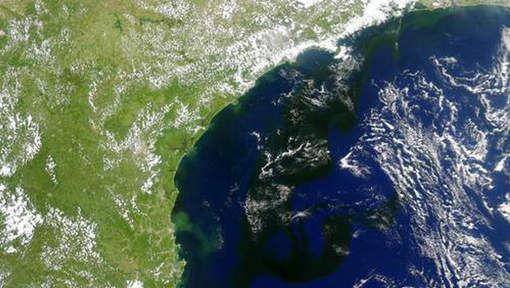 Une gigantesque masse d'algues au large du Brésil