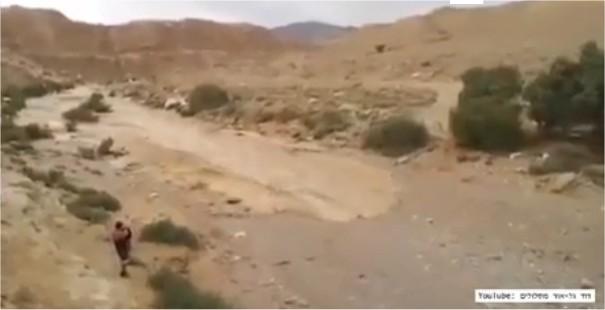Une rivière réapparaît au beau milieu d'un désert aride en Israël