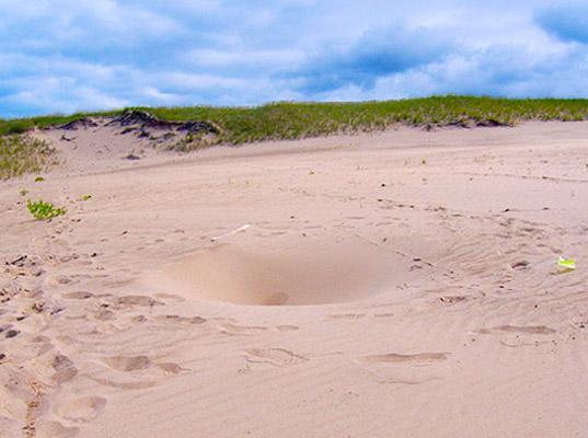 De mystérieux trous apparaissent à la surface d'une dune de sable