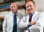 Une « puce » pour détecter les cellules cancéreuses du sang