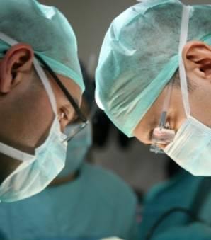 Greffe : une tête humaine complète transplantée d'ici deux ans ?