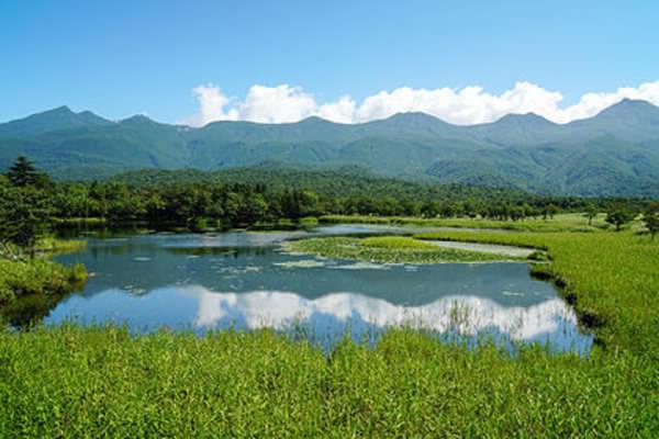 Japon: Naissance mystérieuse d'une portion de terre en quelques heures