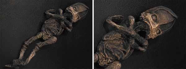 Un extraterrestre momifié découvert en Russie
