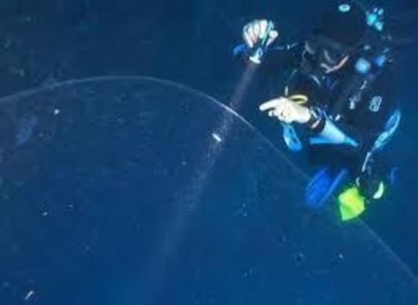 Des plongeurs ont découvert une étrange sphère gélatineuse au large de la Turquie