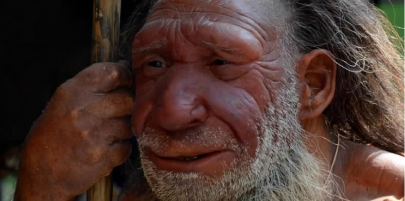 L'homme de Neandertal savait créer de l'art abstrait !