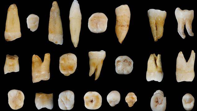Des humains en Chine il y a 80 000 ans
