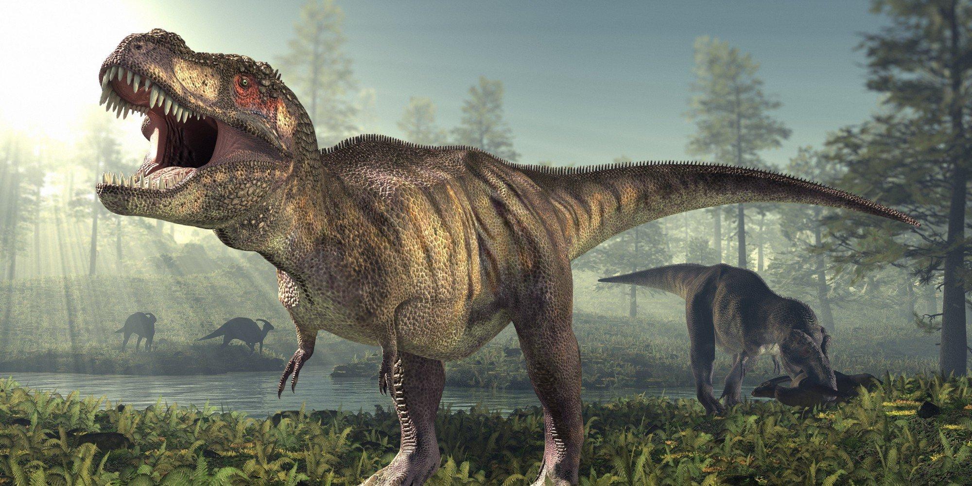 Des Globules Rouges et du collagène de T-Rex ont été découverts dans un fossile vieux de 75 millions d'années