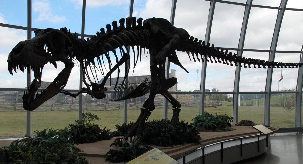 Il y aurait eu environ 2 000 espèces de dinosaures