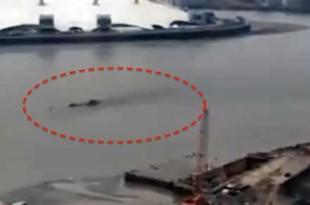 Une créature ou un sous-marin Russe repéré dans la Tamise