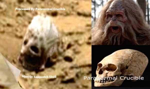 Le crâne d'un extraterrestre découvert sur Mars