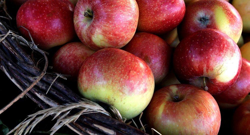 Des scientifiques US font la liste des fruits et légumes dangereux pour la santé