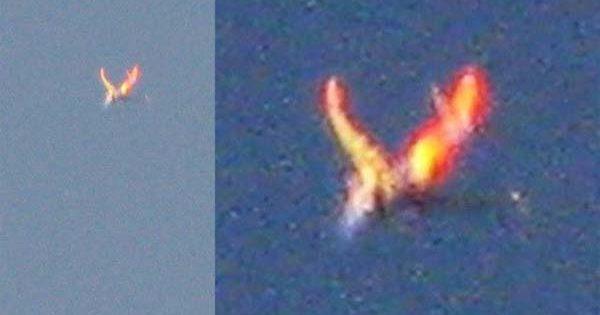 Un Phoenix Flamboyant a été pris en Photo dans le Colorado le 21 juin 2017