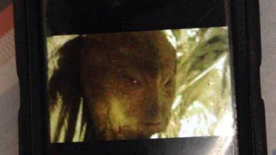 Un homme a dévoilé la PHOTO d'un « Vrai Extraterrestre » !!