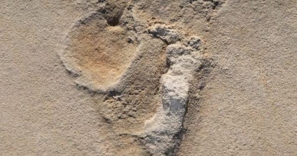 Il y a 5,7 millions d'années: La Crète pourrait bien être le berceau de l'humanité