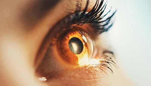 Des docteurs ont restauré la vue de deux personnes dans une première mondiale incroyable