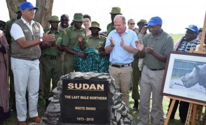 Kenya: les braconniers en possession d'ivoire emprisonnés à vie