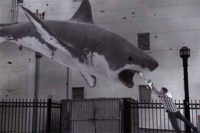Quelqu'un a lancé une rumeur selon laquelle l'ouragan Florence contenait des requins et les gens y ont cru