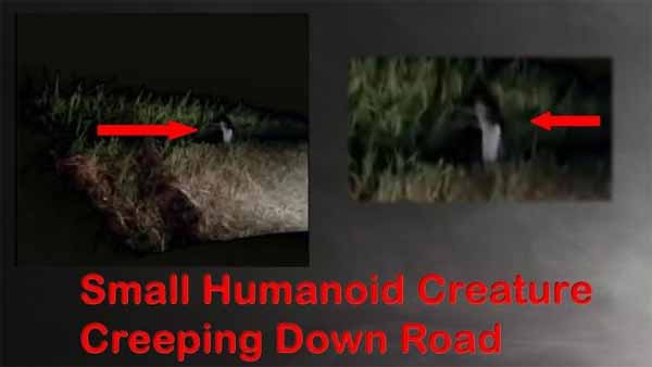 Une étrange créature humanoïde filmée en train de courir sur la route
