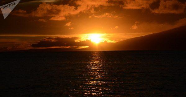 Mystère des profondeurs: un «extraterrestre» découvert dans l'océan Pacifique? (photo)