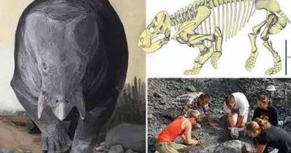 Un mammifère de la taille d'un éléphant vivait aux côtés des dinosaures