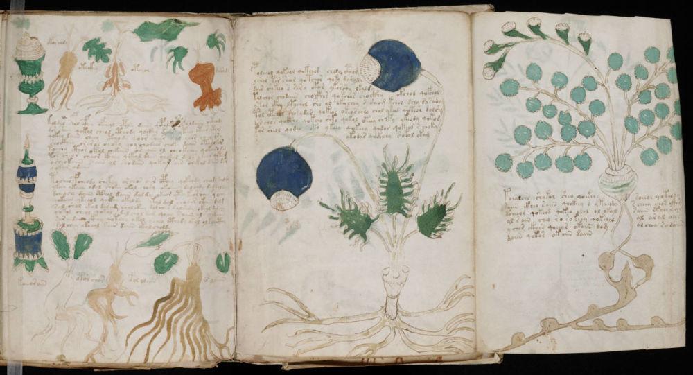 Le mystérieux manuscrit de Voynich décrypté
