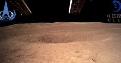 La Chine fait pousser du coton sur la face cachée de la Lune
