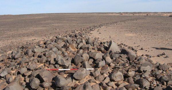 Des restes d'une civilisation ancienne découverts dans le Sahara occidental