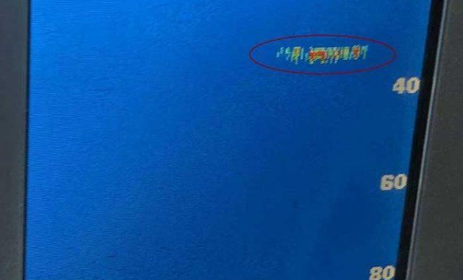 Un skipper repère le monstre du Loch Ness sur son sonar