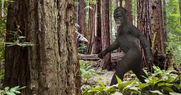 New Hampshire (USA) : Un citoyen inquiet croit que le Bigfoot est responsable d'une série de cambriolages dans la région